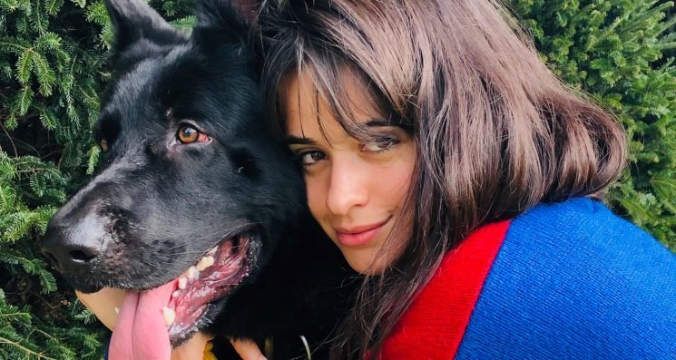 Camila Cabello Spills About Her Thanksgiving Break!