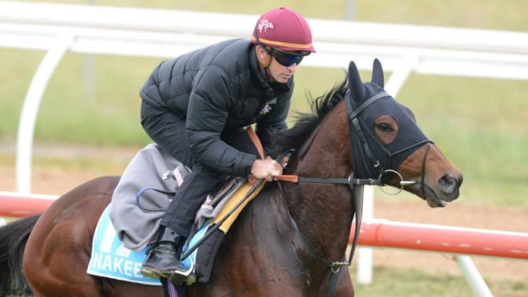 Nakeeta claims final spot in Melbourne Cup