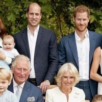 The Royals Didn't Know Meghan Was Pregnant Yet in This Photo Shoot