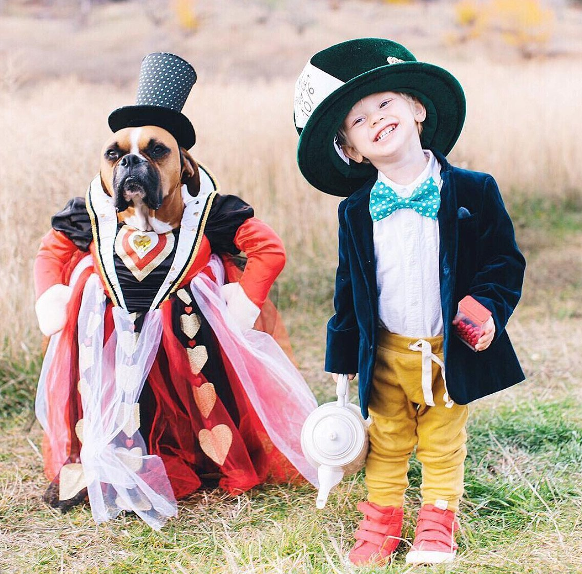 trick-or-treat! from disney to superheroes, see these celeb kids