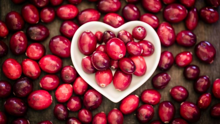 Cranberries Aren't Just Festive — They're Good for You Too