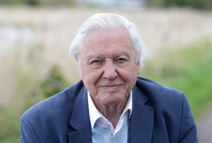 How old is Sir David Attenborough, who was his wife Jane, how many brothers does he have and what's The Queen's Green Planet about?