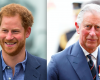 Prince Harry Looks Exactly Like a Young Prince Charles, & Fans Are Going Wild