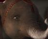 'Dumbo' Trailer: Tim Burton's Live-Action Take On Disney Classic Takes A Heartfelt Flight