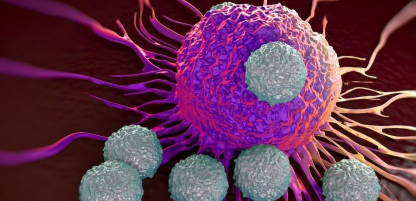 New Cancer Immunotherapy Technique Can Specifically Target Tumor Cells