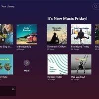 Spotify Returns to Roku Streamers, TVs