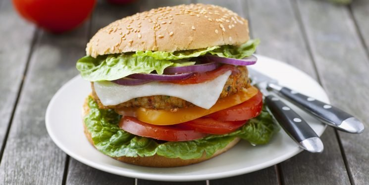 Everything You Need To Know About Vegetarian Meat Subsitutes