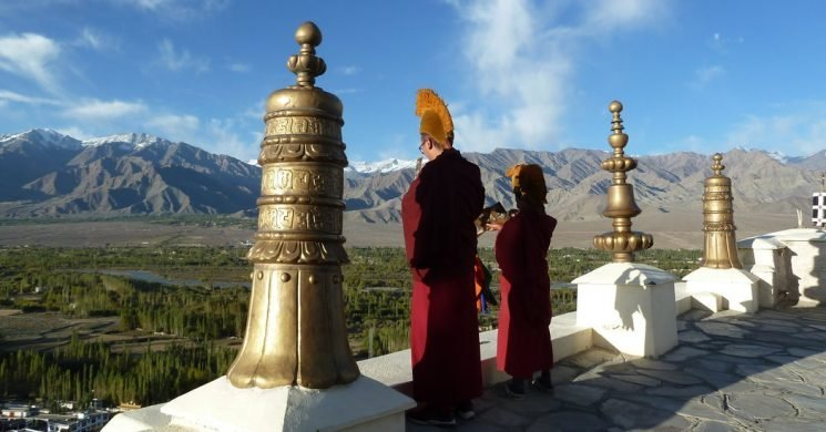 Cups of Tea, Pashminas and Momos, Seeing India's Himalayas on a Budget