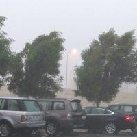 Why is it raining so much in Qatar this season?