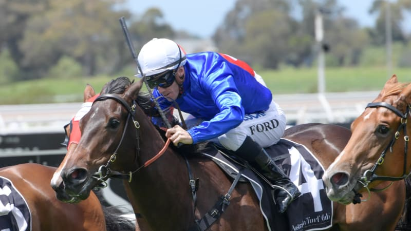 Where are the decent two-year-olds in Sydney before Christmas?