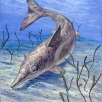 Ancient 'sea monster' was basically a huge dolphin creature