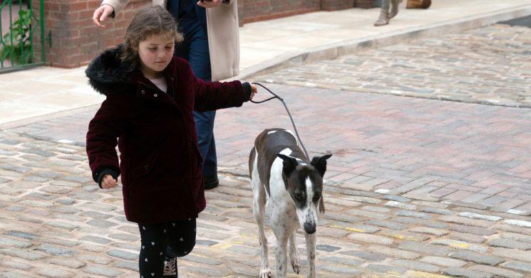 Corrie devil child Hope gets horrific revenge by 'killing' defenceless dog