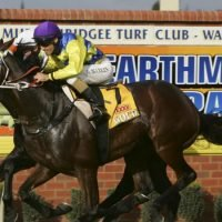 Wellington veteran to come Steamin' home at Wagga