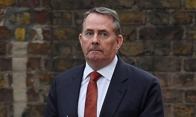 Liam Fox hints that second Brexit referendum could be on the table