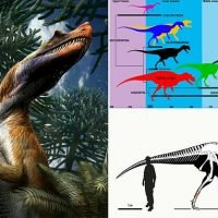World's oldest large meat-eating dinosaur identified by scientists