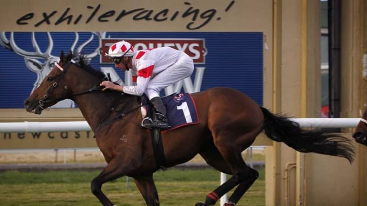 Race by race preview and tips for Newcastle