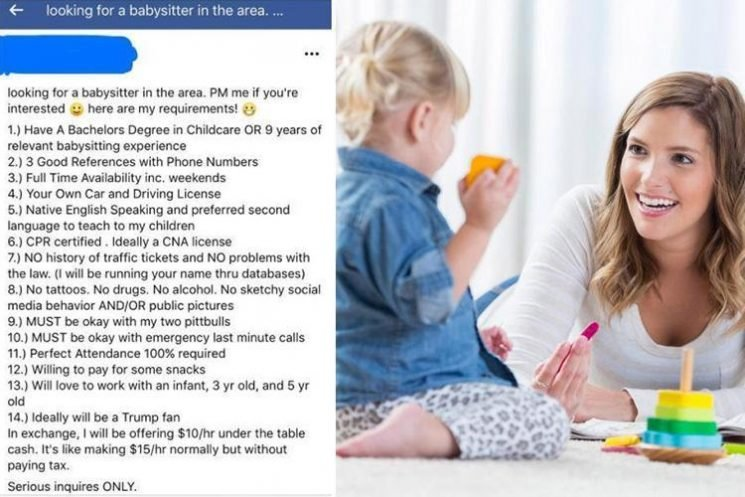 Mum mocked for ridiculous list of demands in ad for a babysitter… including a degree in childcare, 24-hour emergency availability and a 'second language to teach my kids'