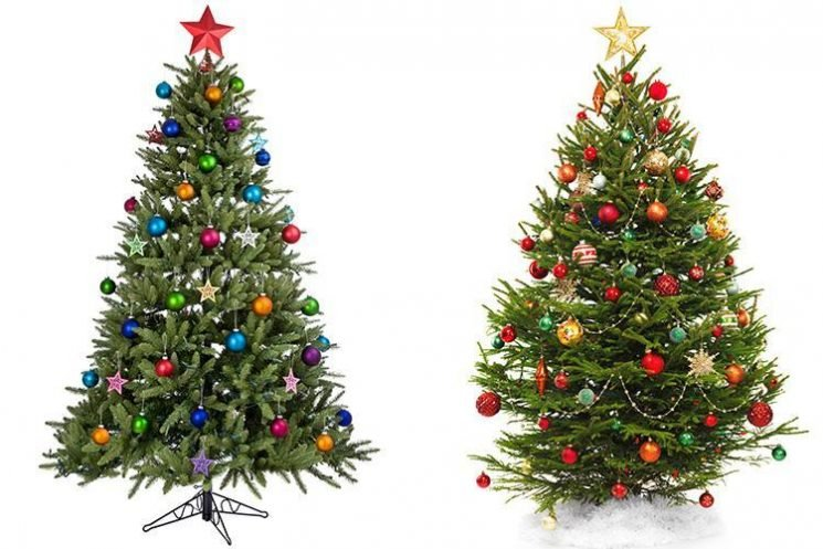 Real vs artificial Christmas trees – the pros and cons with two weeks to go