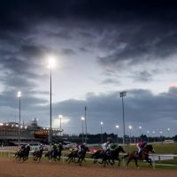 Monday's racing tips: Two Monday longshots to fill your pockets at Wolverhampton from Jack Keene