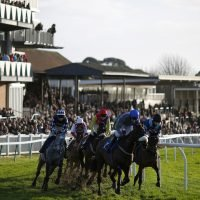 Templegate's racing tips: Southwell, Fontwell and Uttoxeter – Templegate's betting preview for racing on Tuesday, December 11