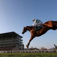 Saturday's Caspian Caviar Gold Cup betting preview: Latest runners, riders, odds and trainer quotes for the final field
