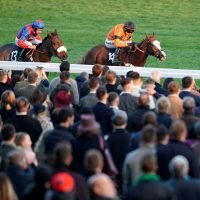 Best horse racing tips for today's action at Cheltenham, Doncaster, Bangor and Kempton from Tom Bull
