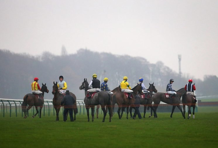 Best horse racing tips for today's action at Newcastle, Haydock, Lingfield and Ascot from Tom Bull