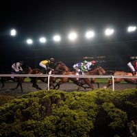 Wednesday's racing tips: Three Wednesday longshots to fill your pockets at Kempton from Jack Keene
