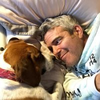 Andy Cohen Is 'Patiently Waiting' for His Baby on the Way with Dog Wacha in Adorable New Photo