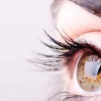You Probably Have Tiny Bugs Living On Your Eyelashes Right Now