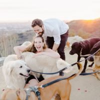 Two Dog Lovers Share 'Incredibly Meaningful' Proposal that Included 16 Adorable Canines
