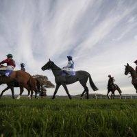 Free horse racing tips for today: Warwick, Taunton, Newcastle and Chelmsford – The Wizard of Odds' betting preview for Thursday, December 13