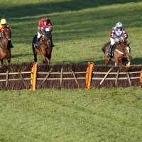 Free horse racing tips for today: Wolverhampton, Plumpton and Ffos Las – The Wizard of Odds' betting preview for this Monday, December 17