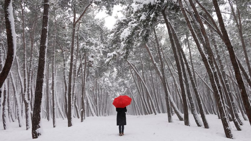 7 Ways to Boost Your Energy When You Have the Winter Blues