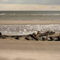 Mysterious, century-old shipwreck unearthed on Jersey shore