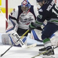 Ottawa 67's acquire goaltender Michael DiPietro from Windsor