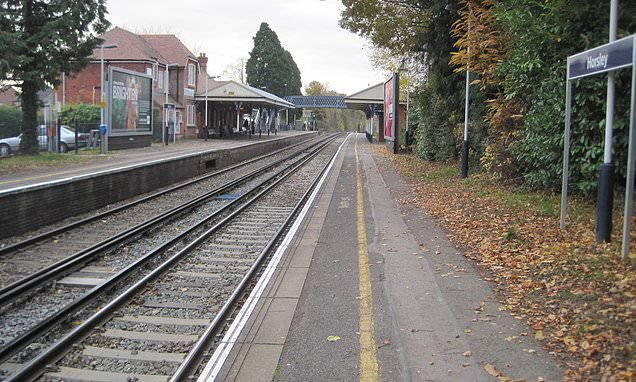 Passenger stabbed to death on board a train from Guildford to London