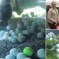 Teen hauls 50,000 golf balls out of ocean off California