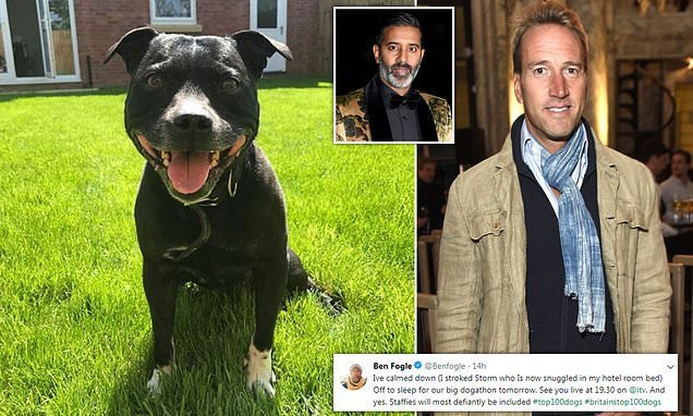 Ben Fogle says he's 'calmed down' and is preparing for 'big dogathon'