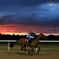 Monday racing tips: A Monday longshot to fill your pockets at Wolverhampton from Jack Keene