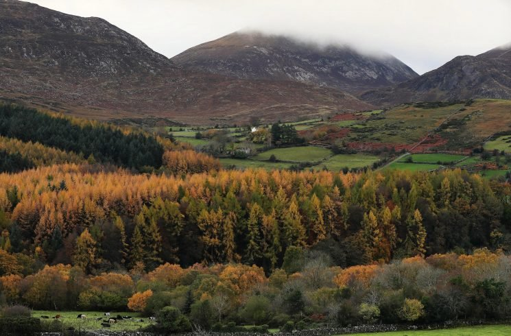 Two walkers die in separate falls just an hour apart in the Mourne Mountains