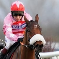Brewin'Upastorm to test his Cheltenham Festival credentials at Trials Day on 26 January