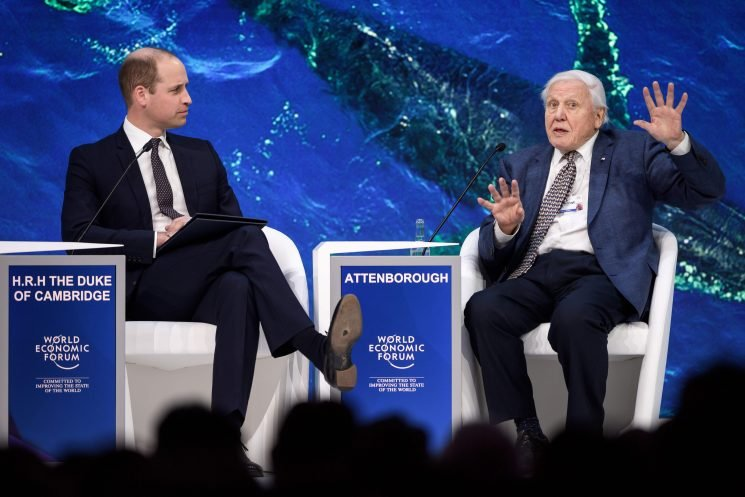 What was said during Prince William and Sir David Attenborough's conversation at Davos 2019?