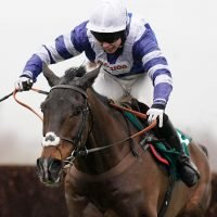 Cheltenham Festival 2019: Paul Nicholls confirms Frodon set to line up in Cheltenham Gold Cup