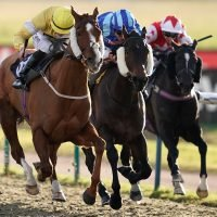 Thursday racing tips: A Thursday longshot to fill your pockets at Southwell from Jack Keene
