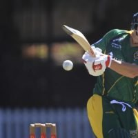 Warner set to have elbow surgery on Tuesday