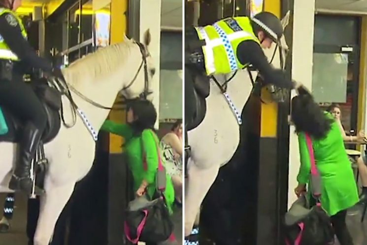 Woman punches police horse before cop throws her to the floor by her hair