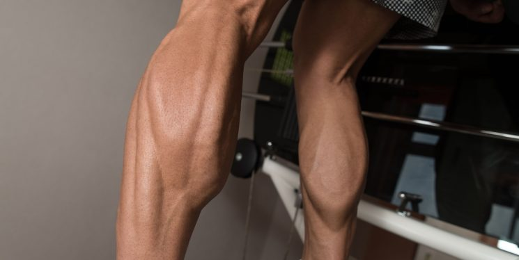 The Ultimate Calf Training Guide