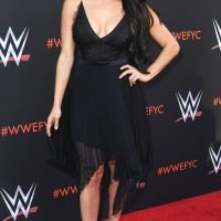 Nikki Bella's Family Says Her Biological 'Clock Is Ticking' – and Tried Repeatedly to Set Her Up
