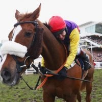Native River could head straight to the Cheltenham Gold Cup without a prep run